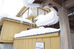2011-01-22-11:30 (Miki'sRoom) Tags: snow   tazawako  sel1855 akkita