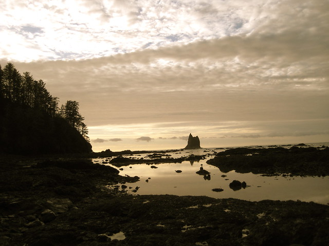 Tidepools and Headlands
