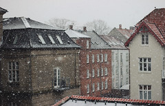 Snowy days (e_m_b_r_y) Tags: season snow winter flakes snowing cold scandinavia wow