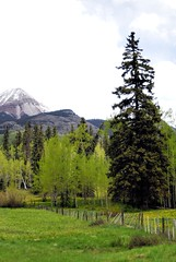 D200-0008 (3)e ~ Purgatory, Colorado (BDC Photography) Tags: purgatory colorado usa milliondollarhighway fence nikon nikond200 nikondslrcamera nikoncircularpolarii72mm nikonhb25lenshood nikonafsvrzoomnikkor24120mmf3556gifedlens