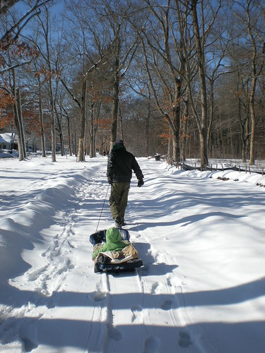 Grandpa pulling the sled through Buttonwood Park