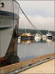 2011-0936 (Feist, Michael - FunnyFence - catchthefuture) Tags: ocean california seattle ca bridge sunset moon mountain lake canada reflection beach window r
