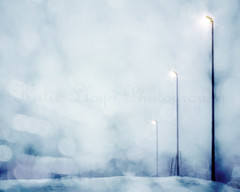 Lights in a Blizzard