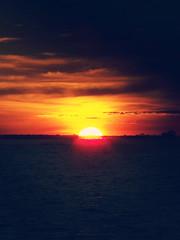 sunset (rodrigofigueiredo) Tags: sunset pordosol sun rio river twilight amazon negro manaus amazonas crepúsculo amazônia