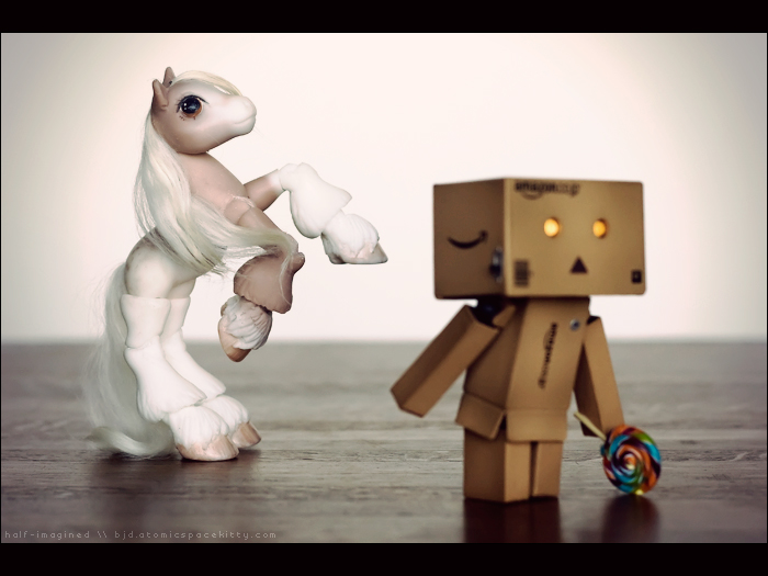 Danbo Meets McPonysons (3 of 6)