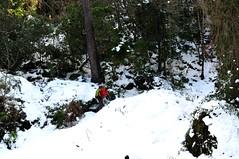 Piste forestière du San Petru : exploration du départ du sentier de Foce Finosella