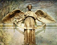Hollywood Angel (Sky Noir) Tags: texture angel hollywood rva kfd skynoir bybilldickinsonskynoircom
