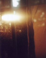 сбор света (_anke_) Tags: zenit et russiancamera film kodak 35mm analog analogue licht light sun evening dirty window tree curtain summer sooc scan bokeh sunbeam свет окно зенит tarkovsky zenitet russian сбор света 2010 ankeschroeder ankeschröder filmisnotdead filmsnotdead filmlebt iloveзенит ilovezenit зенитrocks notwithoutmycameracom notwithoutmycamera