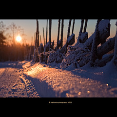 HFF (stella-mia) Tags: pink winter sunset orange sun snow yellow norway sunrise lia sm snø 2470mm hightlight canon5dmkii veslelien