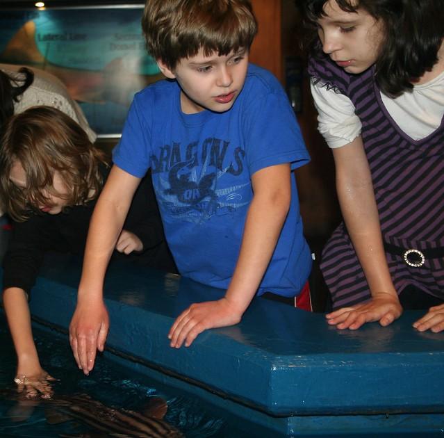 Newport Aquarium:  Seth, Zack, Maya