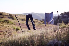 (brianoldham) Tags: light bird grass shirt hands pants meadow line hills clothes laundry hanging
