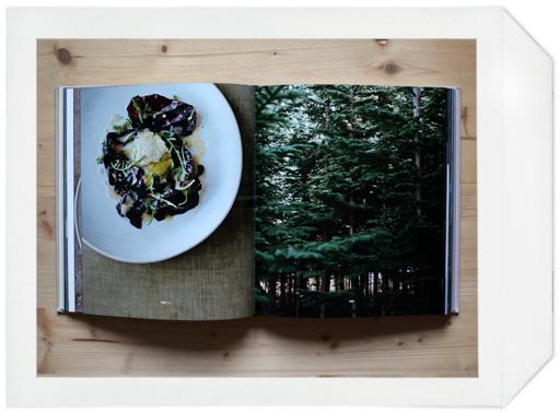noma_book_02