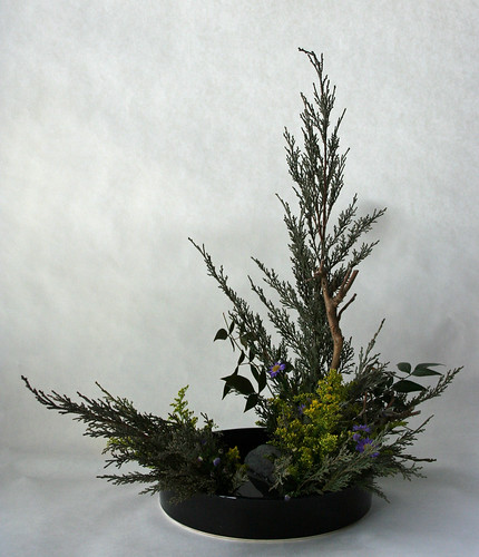 Saga Goryu Ikebana-Natural Landscape