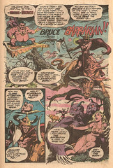 Bruce the Barbarian