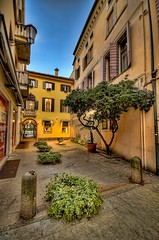 Padova courtyard (Uros P.hotography) Tags: park street old trip travel bridge italy tourism church beautiful museum photoshop wonderful river town canal nice fantastic ancient nikon perfect italia tour cathedral superb basilica awesome famous sigma palace tourist glorious monastery journey stunning excellent walls jews lovely striking incredible picturesque 1020 ghetto unforgettable brilliant hdr breathtaking extraordinary aweinspiring brenta padova topaz remarkable monumental stupendous turism padua memorable veneto d300 exceptional turist photomatix denoise acclaimed bacchiglione brathtaking slod300