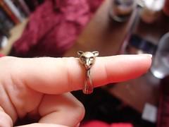 Possum Ring (from H&M)