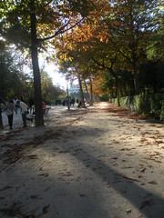 magical autumn day (sftrajan) Tags: madrid park autumn espaa spain october espanha jardin espana paseo bosque otoo garten spanien spagna 2010 otono parquedelretiro espanya parquedelbuenretiro retiropark jardinesdelretiro parquerealdobomretiro