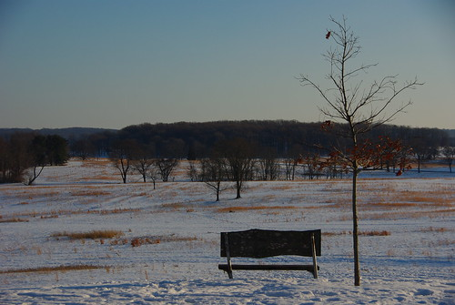 Park Bench at Valley Forge