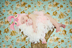 rock-a-bye baby, on the tree top... (Kimberly Chorney) Tags: pink texture girl naturallight babygirl treetrunk precious sleepingbaby 6months owlhat owlsnest