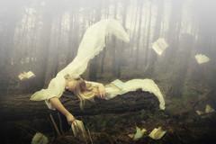 Time Captures Us (*iNiNa* Tracey Christina Photography) Tags: mist nature leaves fog fairytale forest woods sleep books dreams sleepingbeauty missaniela brookeshaden