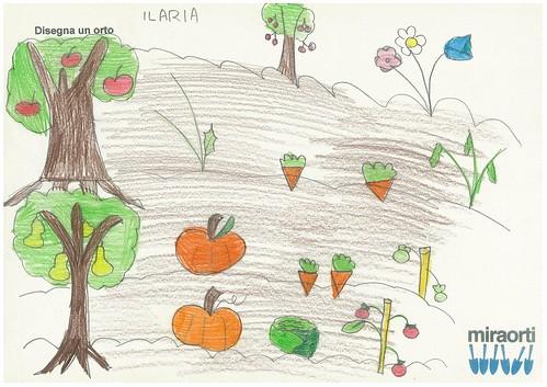 Disegna un orto 2A 19