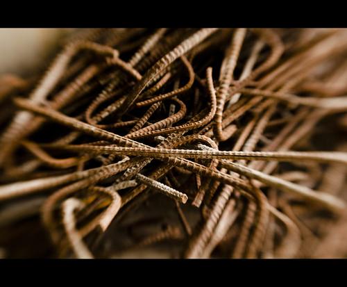 Day 052/365 : 16mm by djokosantoso