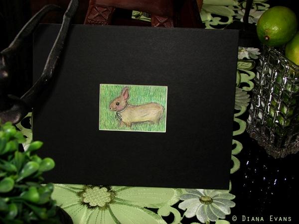 bunnies 006