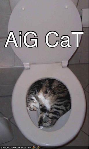 AIG CAT