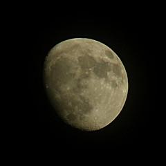 lune / moon (OliBac) Tags: sky moon lune satellite ciel gibbous phases olibac mmxi gibbeuse olympussp560uz