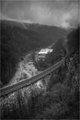 überflogen 1 (Frank Dpunkt) Tags: © monochrome frank blackwhite schwarzweiss schwarzwald dpunkt nikond700 nikkor2485284 frankdpunkt