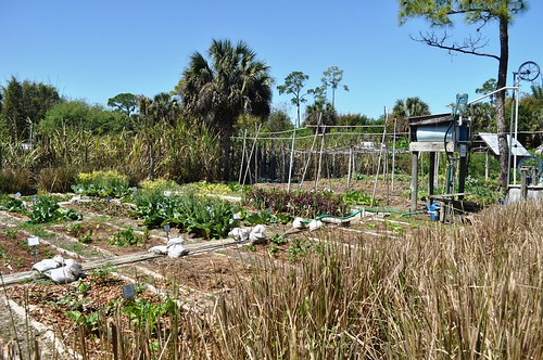 Garden with Water Pumps and Tank, ECHO Farm, North Fort Myers, Fla., March 19, 2011