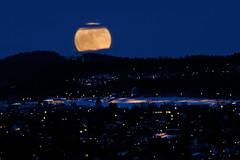 Super Moon in Trondheim, Norway (Explored 20/3-2011) (Arve Johnsen) Tags: moon norway norge norwegen explore moonrise bluehour trondheim norvege bltimen skumring utsikten blauestunde bysen moholtkirke stokkanhaugen skumringstimen dragondaggerphoto supermoon supermne 19march2011 rema1000dragvoll