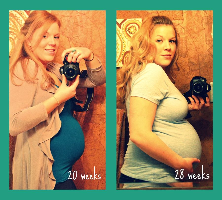 20-28 weeks collage export