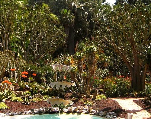 Aloe Garden 1