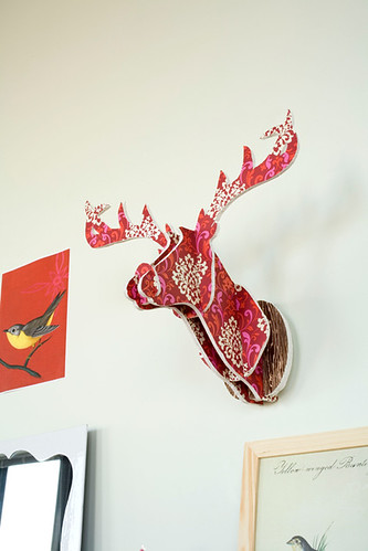 DIY Deer Head Project from Chronicle Books