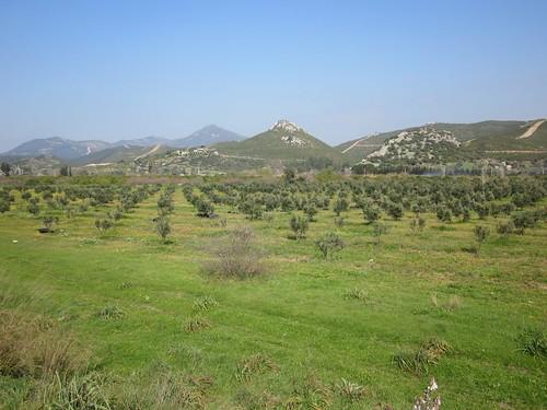 Pleasant countryside near Seferihisar.