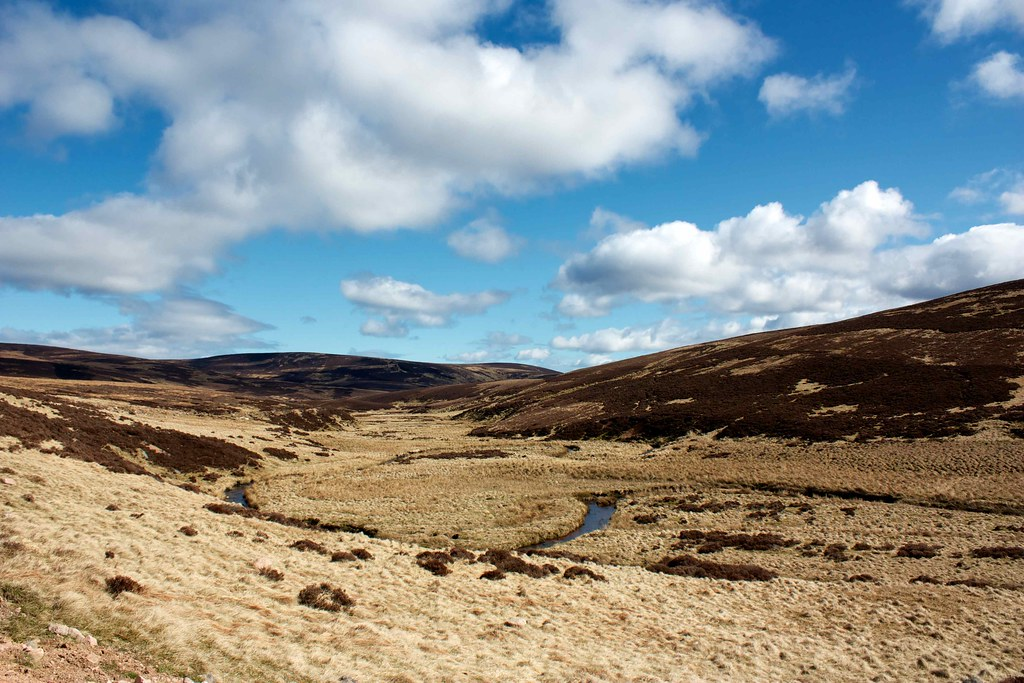 The Upper Reaches of Glen Dye
