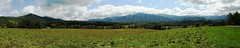 3764e3   P900  Cades Cove pano (jjjj56cp) Tags: pano panoramic cades mountains tennessee cove cadescove gsm smokies greatsmokymountains gsmnp greatsmokymountainsnationalpark sky clouds vista view valley p900 jennypansing trees evergreens grasses meadow