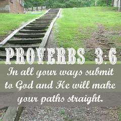 PathsStriaght (Yay God Ministries) Tags: proverbs36 inallyourwayssubmittogodandhewillmakeyourpathsstraight yaygod bible scripture god proverbs3