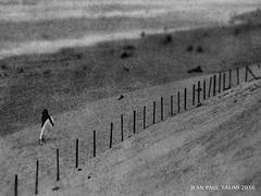 Vers la libert (JEAN PAUL TALIMI) Tags: beach biscarrosse exterieur talimi texture solitude sudouest surf sable silouettes noiretblanc aquitaine landes lignes littoral mer monochrome marche surfeur dune france lumieres