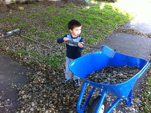 Finn shovels leaves