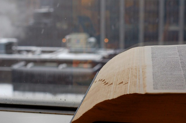 Dictionary and the snow