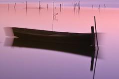 ..dolcemente cullato..... (Maurizio Tattoni....) Tags: italy lago tramonto puglia lesina lungaesposizione daunia capitanata mauriziotattoni febbraio2011challengewinnercontest