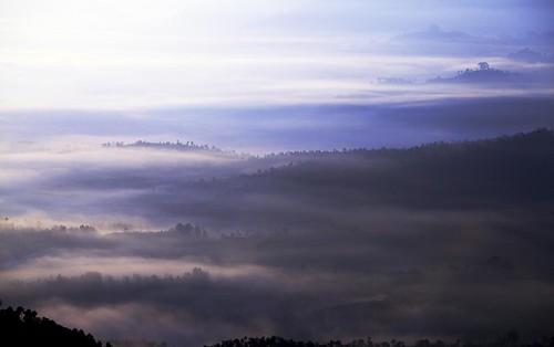 フリー写真素材, 自然・風景, 霧・霞, 山, ネパール,