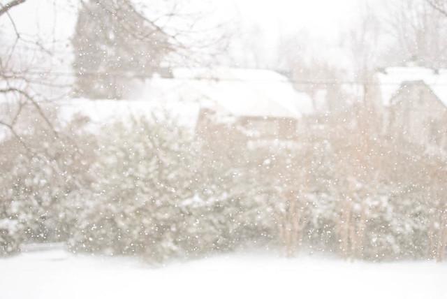 gentle snowfall.