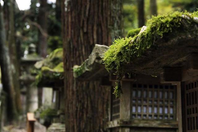 101113_143342_春日神社