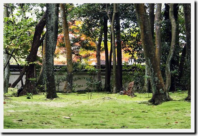 20101114_104024_秋篠寺
