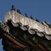 Changdeokgun Palace 청덕궁- US Army Korea - Yongsan-9
