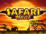 Online Safari Heat Slots Review