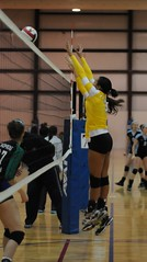 (Rox Volleyball) Tags: volleyball rox volleyballclub roxvolleyball ilovevolleyball volleyballclubpics